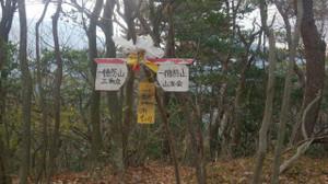 Iwawaki3_2