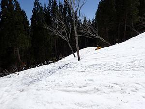 P4230074